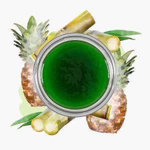 Waldmeister Ananas